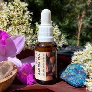 andiroba medicina sagrada